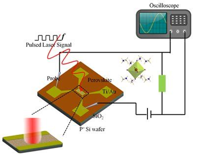 Organic solar cell thesis